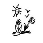 Die kleinen Dinge... Sonne, Blumen, Vögel